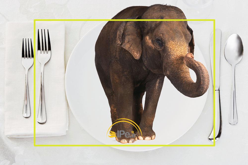 خوردن یک فیل