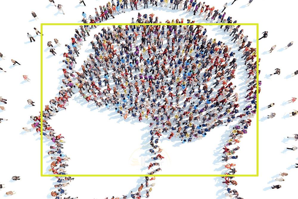 مغز-اجتماعی