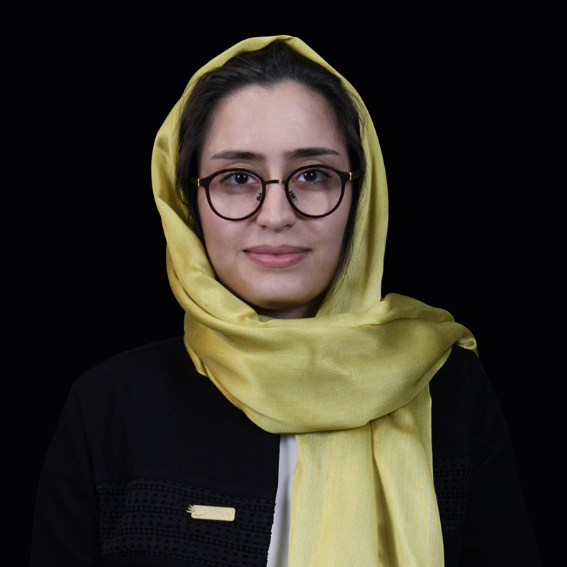 رقیه سادات شیخ